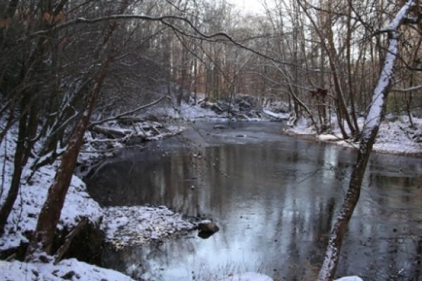 The Uwharrie River.  Photo by Ruth Ann Grissom.