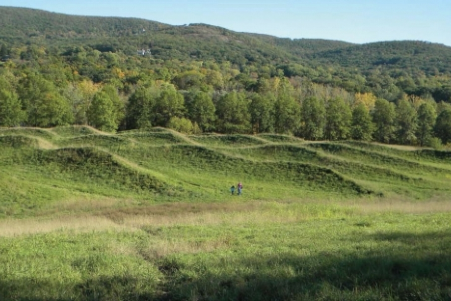 """Maya Lin's 11-acre Storm King """"Wavefield,"""" in the Hudson Valley, occupies a former gravel pit. Its earthen peaks evoke ocean waves rushing to meet the mountainous shore. Photo: arts.gov"""