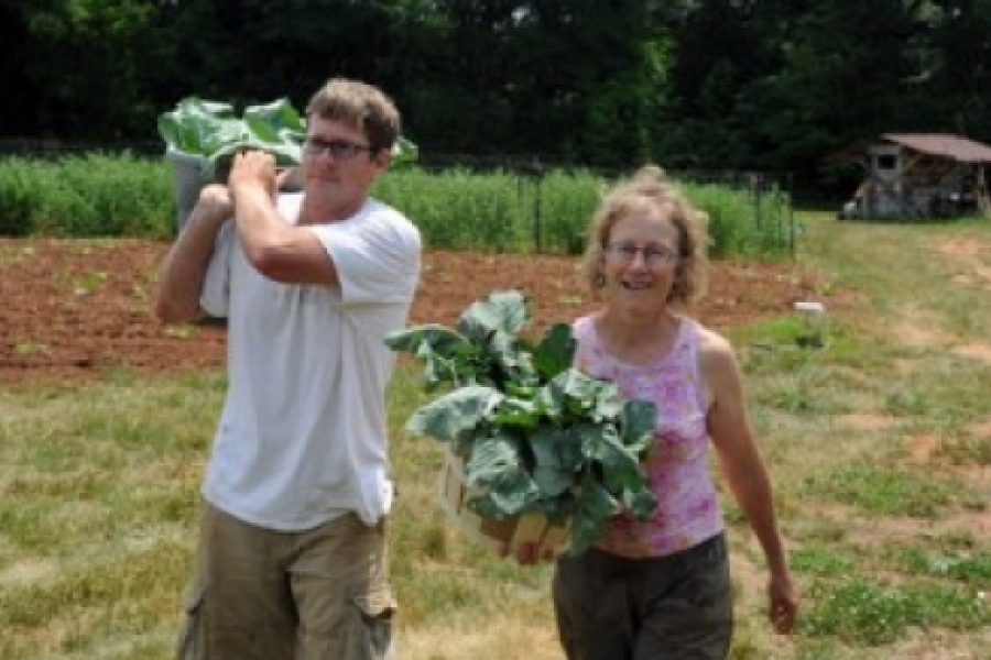 Elma C. Lomax Incubator Farm. This county-operated space gives serious gardeners space and help to make the transition from home gardening to organic farming as a small business, recognizing that many people want local, organic produce.