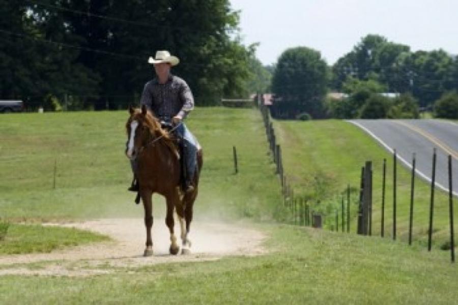 Man rides horseback in eastern Union County.
