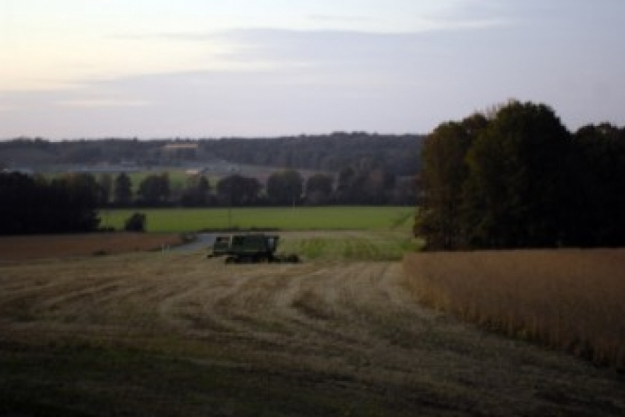 Rural eastern Union County at dusk.