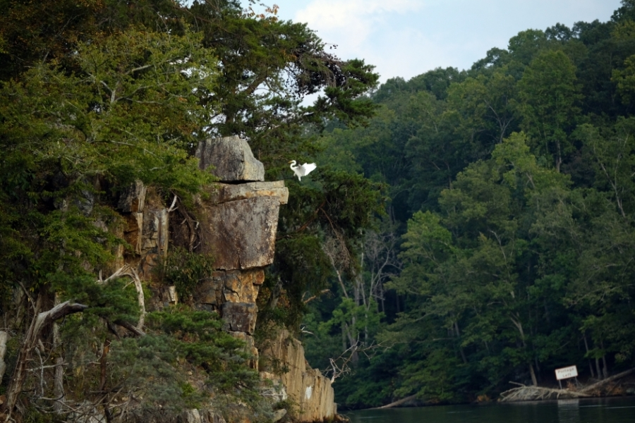 Small, rocky cliffs on the Falls Reservoir near Badin. Photo: Nancy Pierce.
