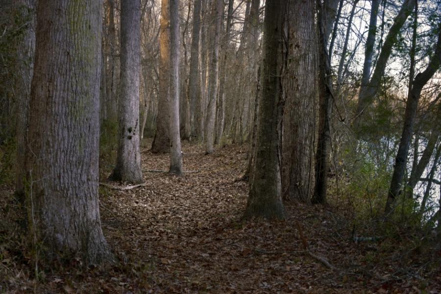 Catawba Nation Greenway on the Catawba Reservation near Rock Hill, South Carolina. The trail is part of the Carolina Thread Trail and runs along the Catawba River, the historic homeland of the Catawba Indian Nation. Photo: Nancy Pierce