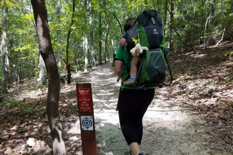 The Ridgeline Trail at Crowders Mountain State Park is part of the Carolina Thread Trail, and connects to Kings Mountain State Park in South Carolina. Photo: Ely Portillo