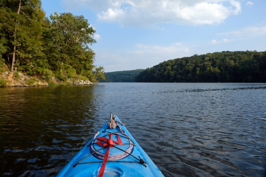 The view paddling on the Falls Reservoir near Badin. Photo: Nancy Pierce