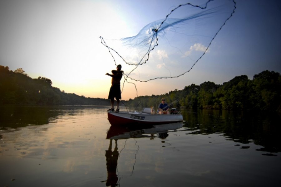 Shad fisherman on the Catawba River near Lancaster.