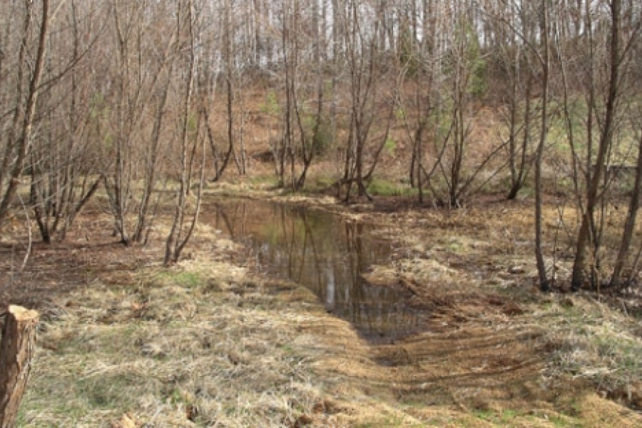 Meandering channel behind the old dam.