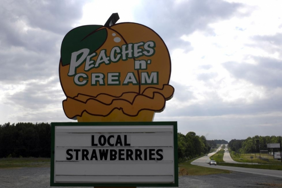 Fruit stand along US Hwy 74 in Anson County.