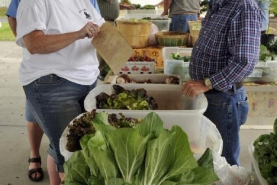 Lincoln County Farmers Market (Lincolnton)