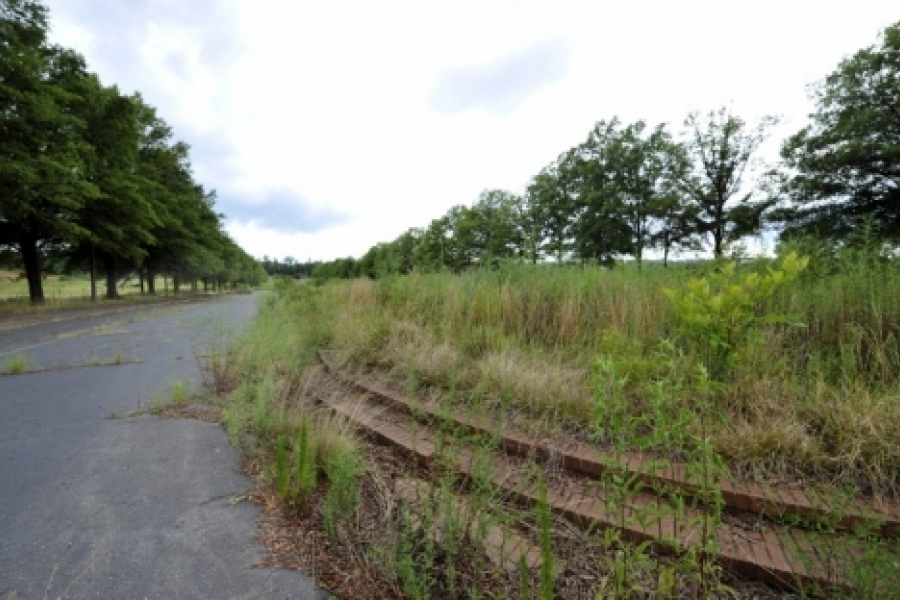 City Park in Charlotte (site of the former Charlotte Coliseum southwest of uptown)