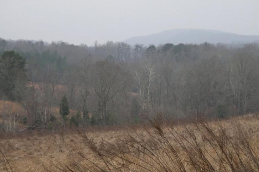 Uwharries landscape in winter.  Photo by Ruth Ann Grissom
