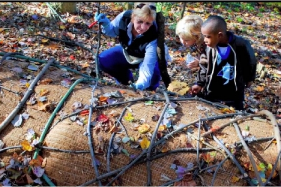 Eco-art involves educational aspects to reveal natural processes, and its interventions yield environmental benefits where they are installed.