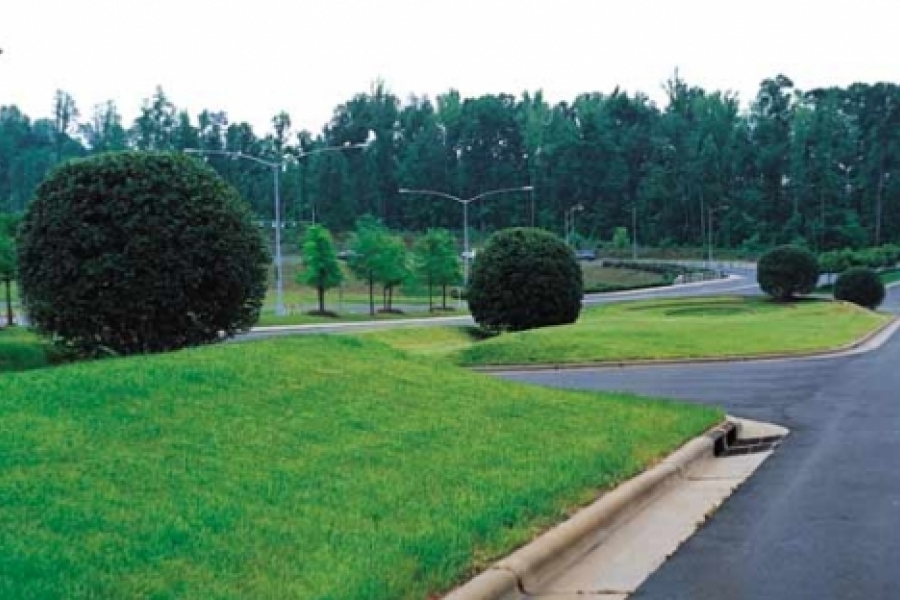 """Maya Lin's """"Topo"""" (1989-1991) at the Charlotte Coliseum (demolished 2007). Earthworks and topiary transform the median of the 1600-foot approach to the Coliseum into the site for an imaginary giant-sized game. Photo: stanford.edu"""