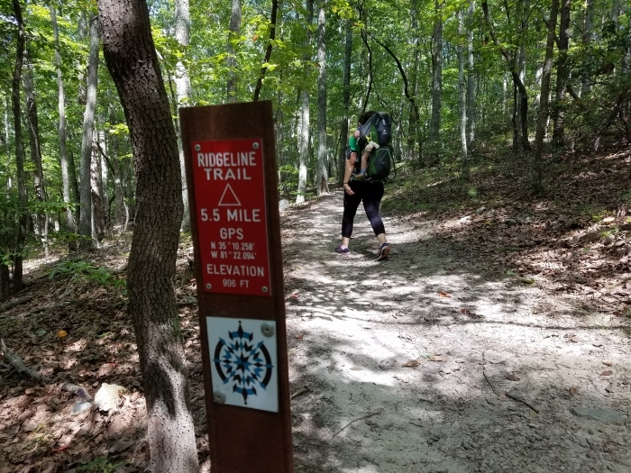 Ridgeline Trail in Crowder's Mountain State Park