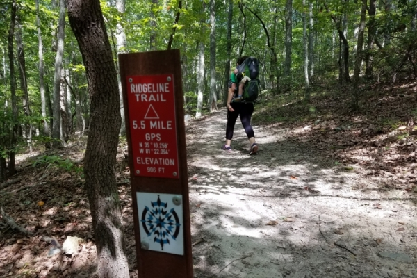 Ridgeline Trail in Crowder's Mountain State Park