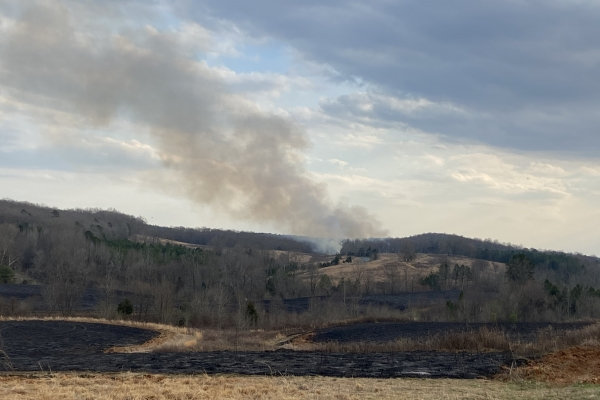 Controlled burn in the Uwharries in NC